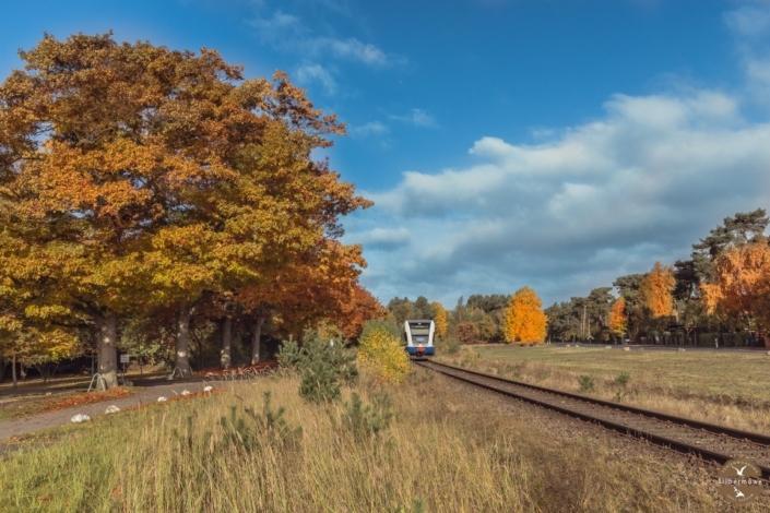 Usedomer Bäderbahn in Karlshagen