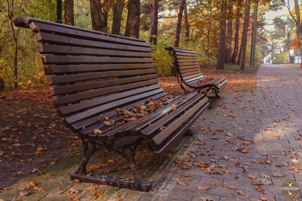 Bank an der Promenade in Karlshagen im Herbst